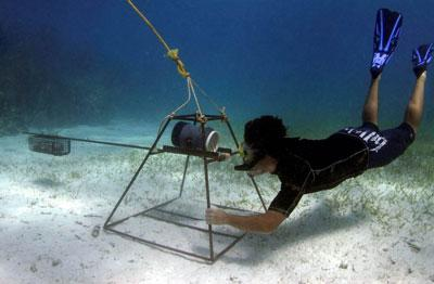 A staff member preparing equipment for a shark survey
