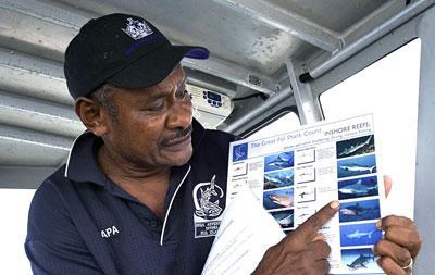 Fiji shark conservation
